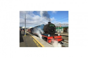 Lions Club Steam Train Excursion)